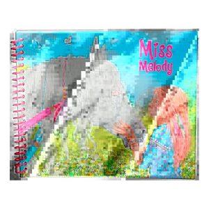 Miss Melody Sticker Book