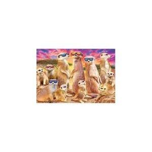 3D Keyring - Cool Meerkats