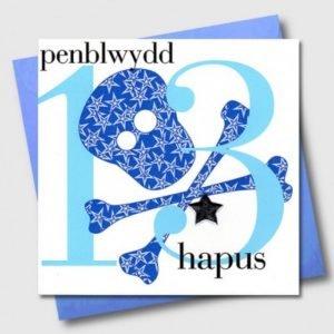 Penblwydd Hapus 13 Blue Skull & Crossbones Card