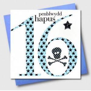 Penblwydd Hapus 16 Blue Skull & Crossbones Card