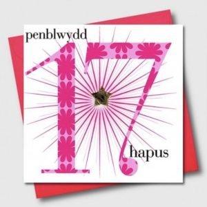 Penblwydd Hapus 17 Pink Flowers & Silver Star Card