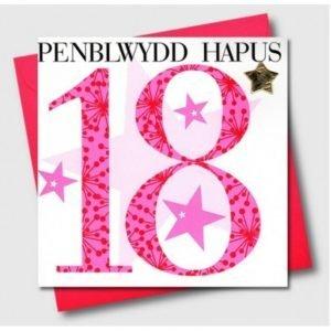 Penblwydd Hapus 18 Pink Flowers & Silver Star Card