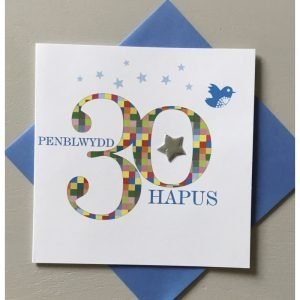 Penblwydd Hapus 30 Multicoloured Checks & Silver Star Card