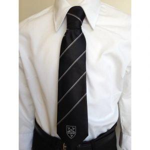 Cowbridge CS Sixth Form Tie