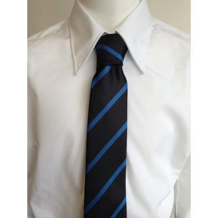 Cowbridge CS Year 7-11 Tie