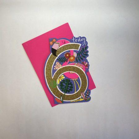 Rachel Ellen 6 Today Flamingo Card