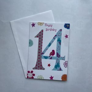 Happy Birthday 14 Blue & Pink Age Card
