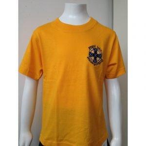 Ysgol Iolo Morgannwg PE T-Shirt - Yellow