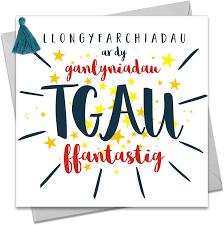 Llongyfarchiadau - TGAU